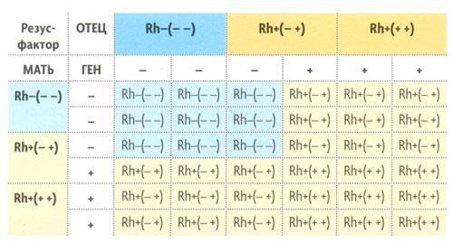 таблиця для визначення резус-фактора