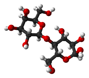 молекула лактози (молочного цукру)